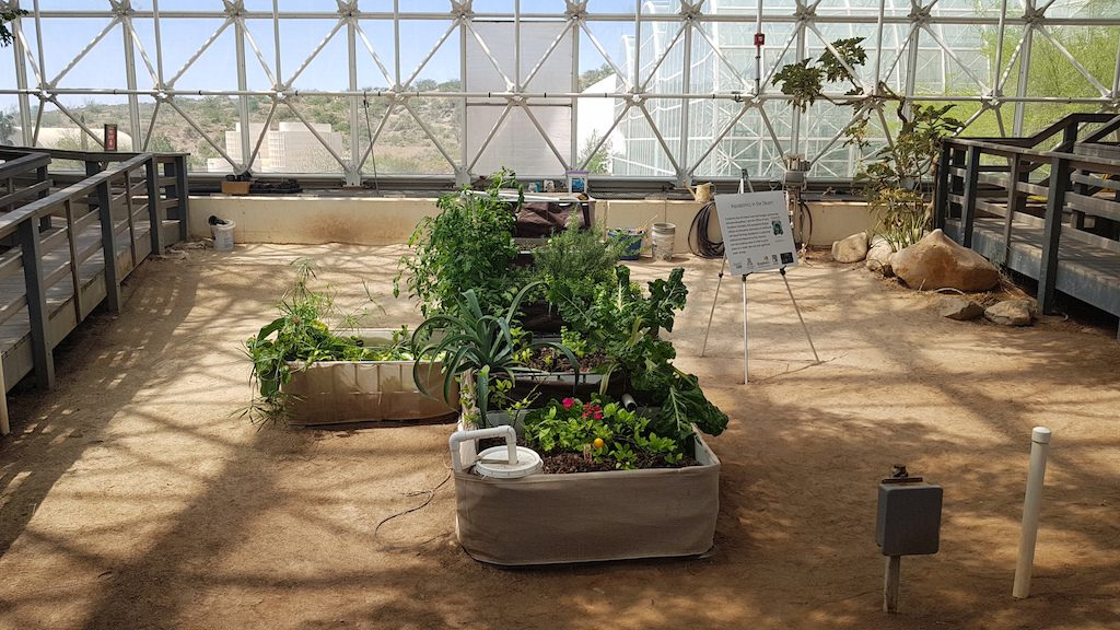 Cultivating plants at Biosphere 2