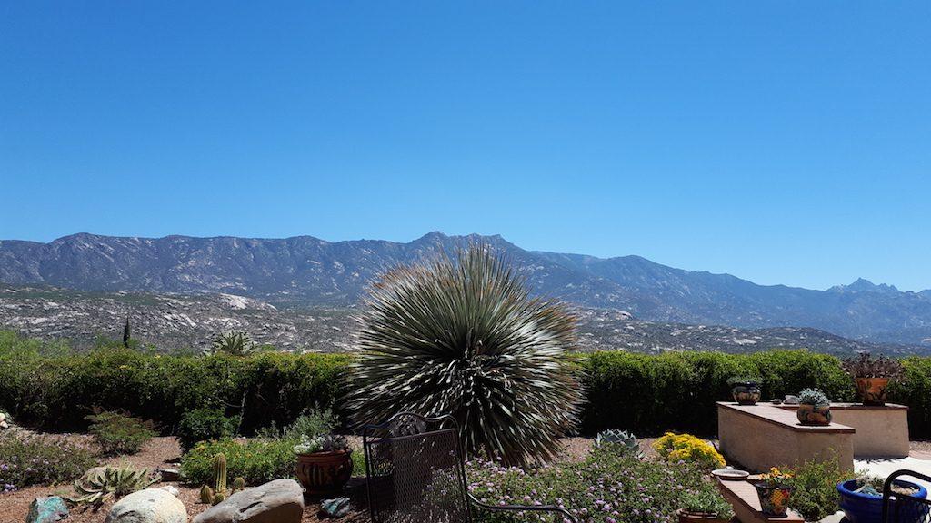 Garden and Santa Catalina Mountains