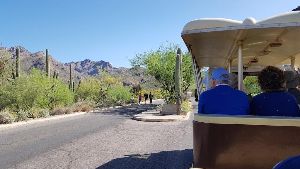 Sabino Canyon Tram