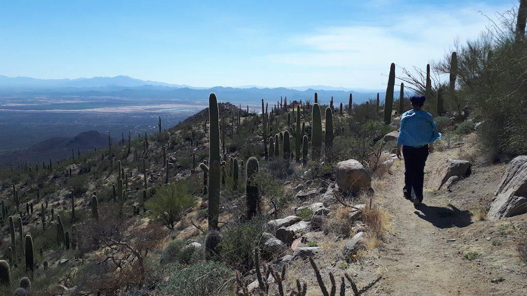 King Canyon Trail